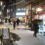 大雪の日の夜       14日