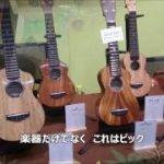 TOKYOハンドクラフトギターフェス2017